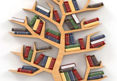 bibliothèque cet été reprise horaires habituels 27/08/2019